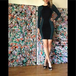 Torn by Ronny Kobo Bodycon Dress